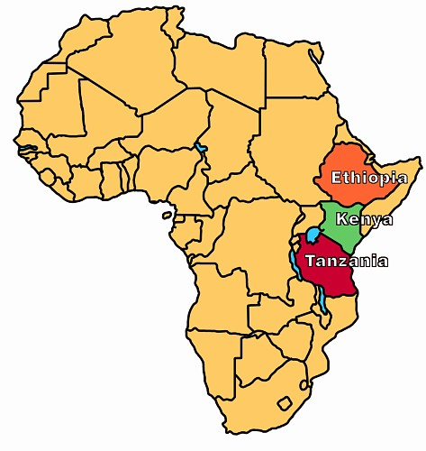 Various East African countries, such as Ethiopia, Kenya, and Tanzania have yielded famous hominid fossils.